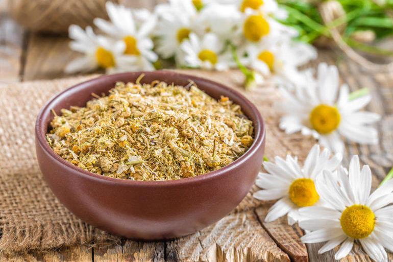 Лекарственные травы от простатита