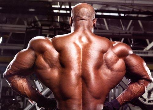 Как накачать мышцы спины в 90