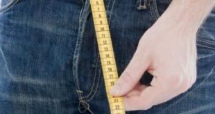 Измерение члена