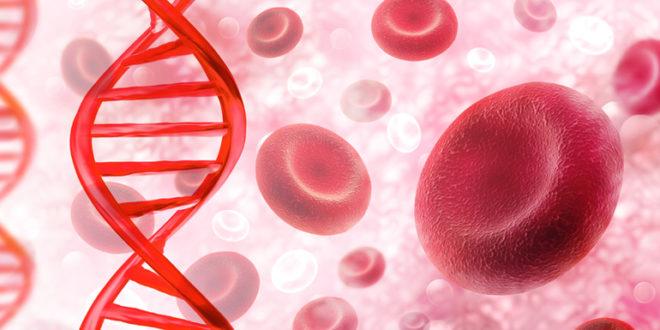 Гемоглобин норма у мужчин после 40
